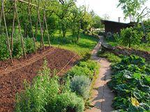 Na ekozahrádce nesmíte používat chemická hnojiva ani jiné chemické přípravky