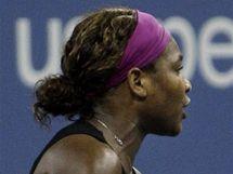 Serena Williamsov� debatuje s rozhod��