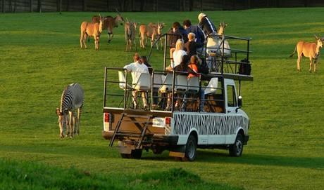 Program Offroad safari