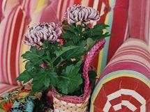 Pro floristy jsou chryzantémy vděčným objektem zájmu, s jehož pomocí lze spolehlivě oživit každý interiér
