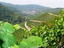 Německo, Porýní, vinice podél řeky Áry