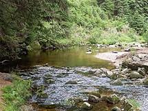 Jizerské hory. Protržená přehrada - zbytky přehrady, tok Bílé Desné