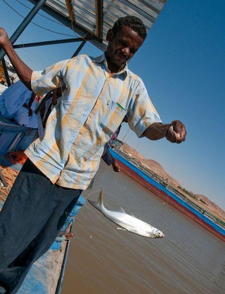 Plavba po divokém Nilu - námořník chytá z paluby ryby