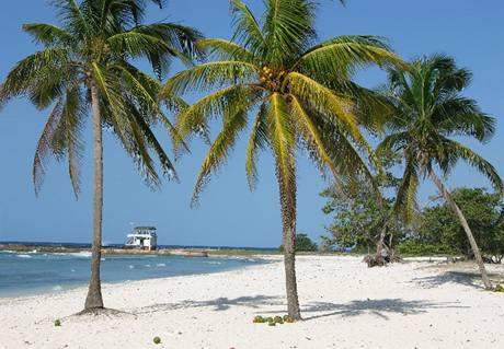 Ostrov Cayo Coco