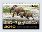 Kalendář Odhalení 2010 - pralesní sloni