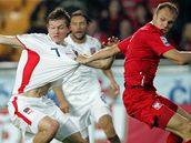 Česko - Polsko: situace před prvním gólem; Tomáš Necid si chystá míč na střelu
