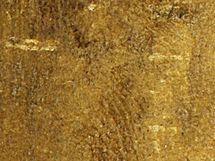 Otisk da Vinciho prstu v malbě