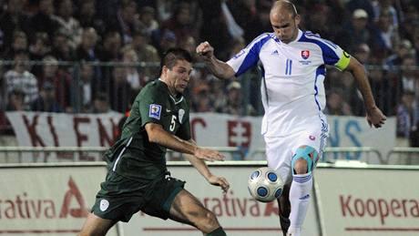 Slovensko - Slovinsko: Robert Vittek (vpravo) a Boštjan Cesar
