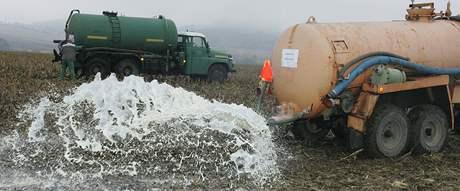 Zemědělci v Bořitově vylévají mléko do polí