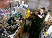 V britském seriálu How clean is your house? expertky na hygienu odhalují tajemství špíny a nepořádku amerických a britských domácností (foto kuchyně před jejich zásahem). U nás byl vysílán na TV Barandov jako Máte doma uklizeno?