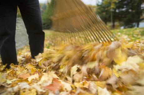 Podzimní úklid listí