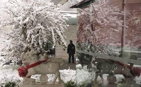 Sníh překvapil čínskou metropoli Peking nezvykle brzy. (1. listopadu 2009)