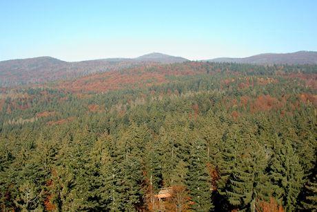 """Stezka v korunách stromů v Bavorském lese - pohled z bavorské """"eiffelovky"""""""
