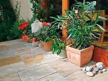Zalít rostliny kolem domu trvá i hodinu
