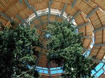 Stezka v korunách stromů v Bavorském lese - Vyhlídková věž - bavorská Eiffelovka