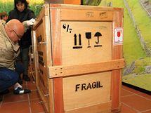 Kurátorka z peruánského muzea Patricia Arana (vpravo) v Brně vybalovala zlatý poklad Inků