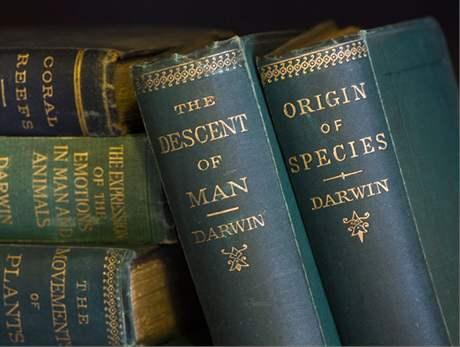 24. listopadu 1859 spatřilo světlo světa 1250 kopií 1. vydání knihy Charlese Darwina O vzniku druhů přirozeným výběrem.