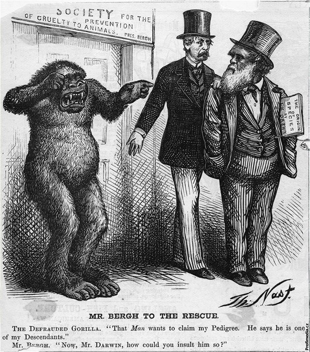 Darwinovu cenu za nejhloupější smrt vyhráli dva bankovní lupiči