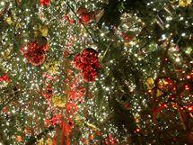 Na Staroměstském náměstí v Praze byl slavnostně rozsvícen vánoční strom. (28. listopadu 2009)