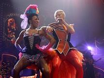 Zpěvačka Pink vystoupila v pražské O2 areně