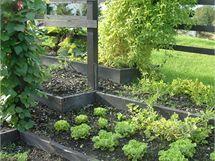 Vyvýšené hrazené záhony lze zasadit i do svahu, aniž by zálivková či dešťová voda splavovala z jejich povrchu drahocennou zeminu.