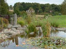 Zahradní jezírko je dostatečně rozlehlé, rozdělené do několika různě hlubokých zón, takže je možné se v něm i pohodlně vykoupat.