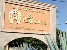 Mexiko, Tequila. La Casa Herradura vyrábí tequilu již 150 let