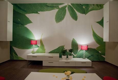 Obývacímu pokoji po proměně vévodí tapeta zmateriálu clipso