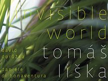 Tomáš Liška Trio: Invisible World; obal CD
