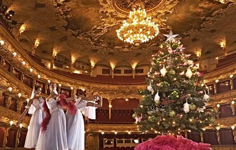 Francouzská kolorativnost - netradiční vánoční barvy
