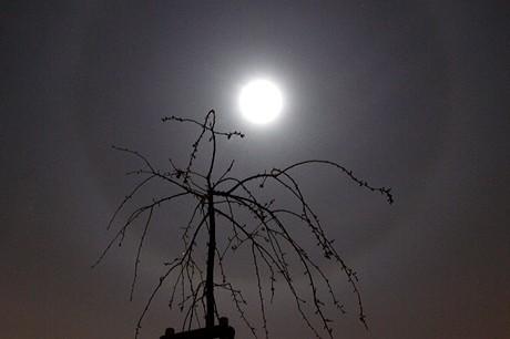 Kolem Měsíce byl o víkendu vidět jasný světelný prstenec.