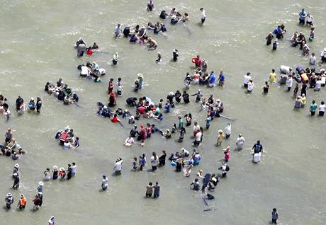 Na pláži v zátoce Colwille Bay zachránili lidé více než 40 kytovců (28. 12. 2009)