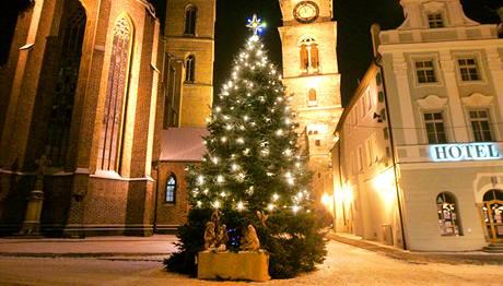 Anketa o nejkrásnější vánoční strom v republice - Hradec Králové