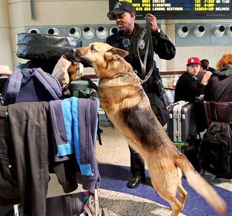 Zesílené bezpečnostní kontroly na letišti v Los Angeles