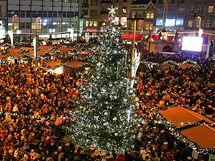 Anketa o nejkrásnější vánoční strom v republice - Brno