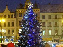 Anketa o nejkrásnější vánoční strom v republice - Liberec