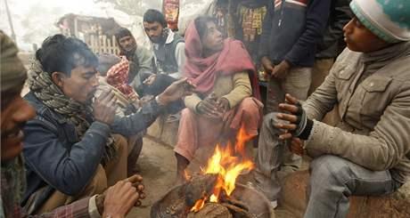 Zima v Indii - chlad a mlha (8. ledna 2010)