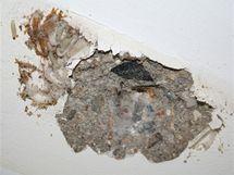 Pokud máte v bytě moly, je pravděpodobné, že mají hnízdo právě v prostoru mezi stropem a garnyží.