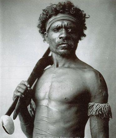 Austrálský bojovník