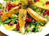 Míchaný salát s krůtím masem