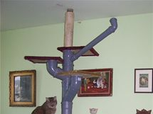 Ideální je kostru šplhadla ukotvit ke stropu a můžete ji začít obalovat sisalovým provazem, vhodným pro kočičí drápky.