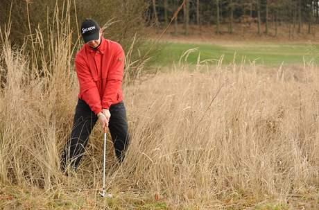 Seriál o golfových pravidlech - povolené zaujetí pozice v roughu.