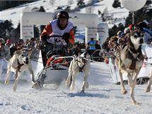 Ze závodu psích spřežení La Grande Odyssée 2010.