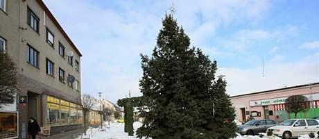 Vánoční strom v Miroslavi na Znojemsku nemohli kvůli mrazům do Tří králu uklidit