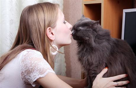Kočky nemají rády změny, jinak reagují změnou chování.
