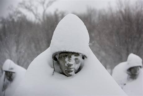 Washingtonským sochám přibyla sněhová čepice (6. února 2010)