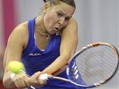 Česká tenistka Lucie Hradecká při fedcupovém utkání v Brně.