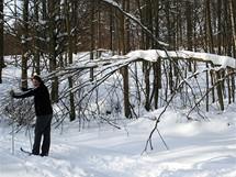 Na běžkách Podkomorskými lesy. Zimní pohádka v Pohádce máje