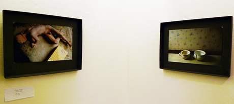 Pohled do expozice Heleny Lukasové v Ateliéru Josefa Sudka v Praze