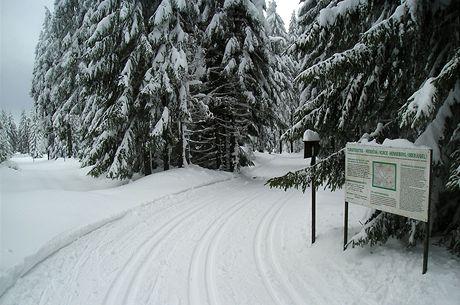 Německá část Krušnohorské lyžařské magistrály v únoru 2009
